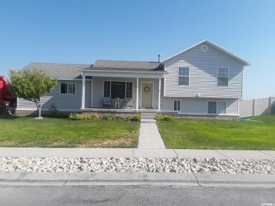 Eagle Mountain Single Family Home For Sale: 1359 E Falcon Ln