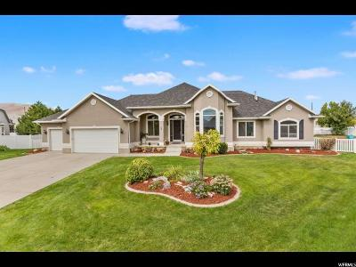 Saratoga Springs Single Family Home For Sale: 72 Wildflower Ct