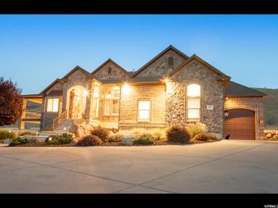 Herriman Single Family Home For Sale: 7247 W Juniper Tree Cv