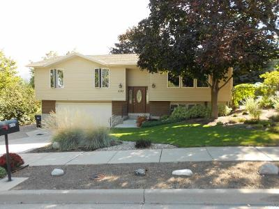Sandy Single Family Home For Sale: 9193 S Solena Way #101