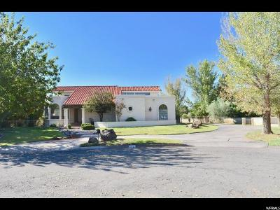 St. George Single Family Home For Sale: 565 Citation