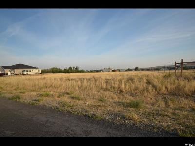 Tooele County Residential Lots & Land For Sale: 1413 Arrowhead Ln