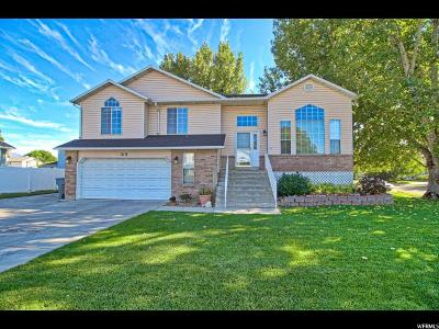 American Fork Single Family Home For Sale: 319 W 850 N