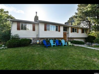 Sandy Single Family Home For Sale: 2467 E Alta Canyon Cir