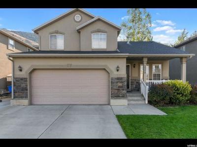 Cedar Hills Single Family Home For Sale: 10538 Sugarloaf Dr