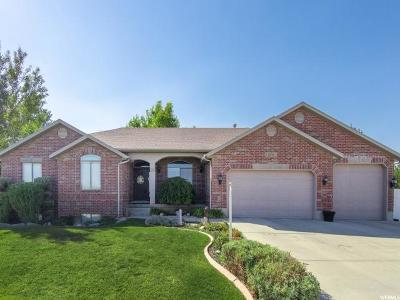 South Jordan Single Family Home For Sale: 10738 S 3210 W