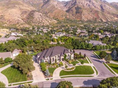 Alpine Single Family Home For Sale: 602 N Quail Hollow Ln