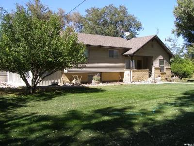 Abraham UT Single Family Home For Sale: $593,714