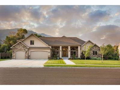 Springville Single Family Home For Sale: 2738 E 1100 S