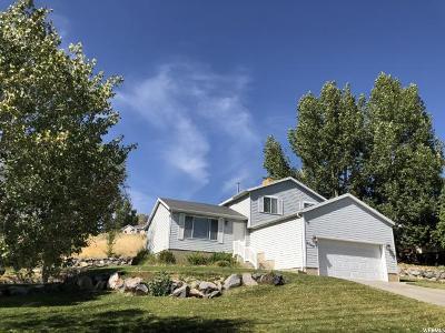Cedar Hills Single Family Home For Sale: 4040 W Juniper Rd N