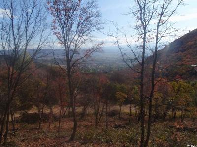Wasatch County Residential Lots & Land For Sale: 1176 Maple Ln