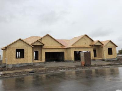 Payson Single Family Home For Sale: 148 W Douglas Dr