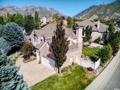 Cottonwood Heights Single Family Home For Sale: 7921 Desert Ridge Cv