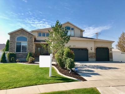 South Jordan Single Family Home For Sale: 10178 S National Pl