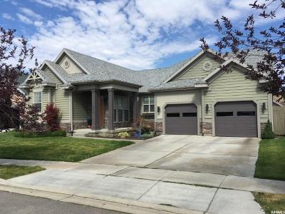 Lehi Single Family Home For Sale: 4839 N Shady Hollow Ln