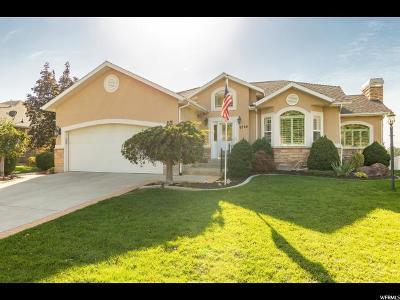 Sandy Single Family Home For Sale: 9724 S Flint Dr E