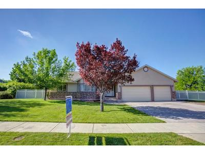 Single Family Home For Sale: 5677 W 10770 N