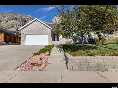 Springville Single Family Home For Sale: 902 N 600 E