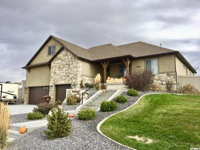 Eagle Mountain Single Family Home For Sale: 9356 N Horizon Dr
