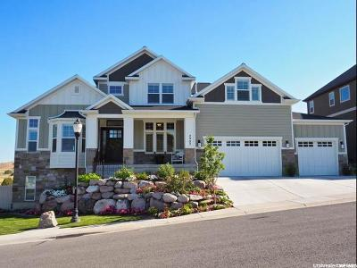 Herriman Single Family Home For Sale: 4903 W River Chase Rd S