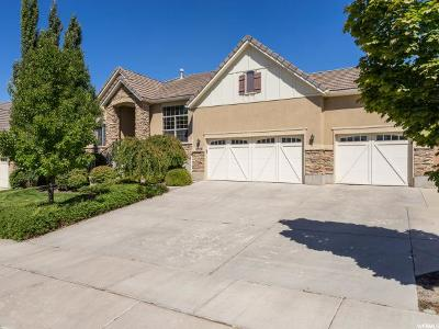 Lehi Single Family Home For Sale: 2308 W Pebblestone Ln N