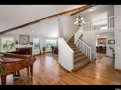 Sandy Single Family Home For Sale: 2115 E Debeers Dr