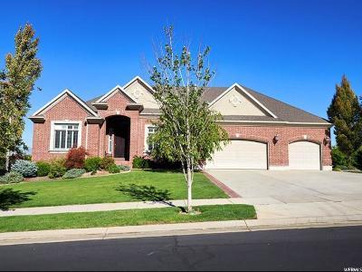 Draper Single Family Home For Sale: 11992 Catania Dr S