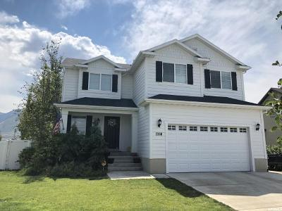 Spanish Fork Single Family Home For Sale: 2366 E Rio Grande Dr