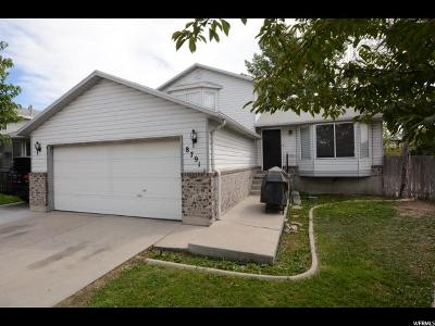 West Jordan Single Family Home For Sale: 8791 S 3965 W