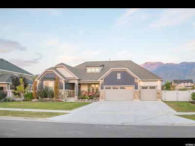 Draper Single Family Home For Sale: 12027 S 645 E