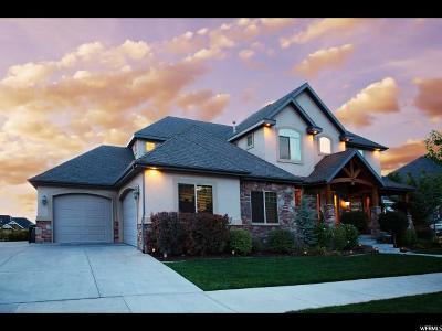 Provo Single Family Home For Sale: 4565 N 475 E