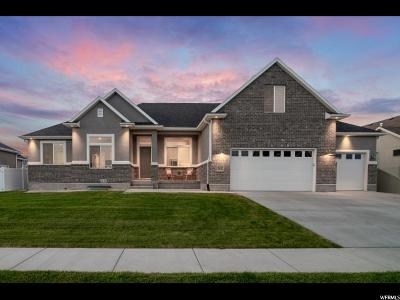 Lehi Single Family Home For Sale: 3375 N 286 W