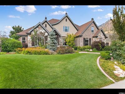 Alpine Single Family Home For Sale: 1041 E Round Mountain Dr