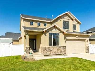 Lehi Single Family Home For Sale: 814 W Northlake Dr