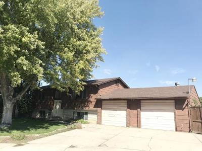 Orem Single Family Home For Sale: 1054 W 500 S