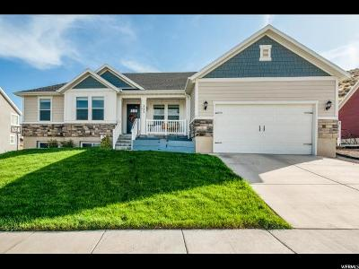 Saratoga Springs Single Family Home For Sale: 117 W Parkside Dr