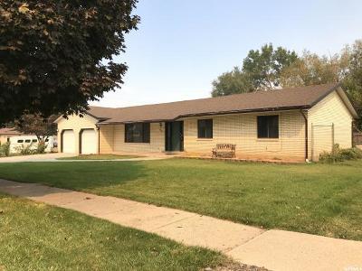 Salem Single Family Home For Sale: 125 E 100 S