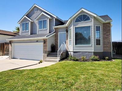 West Jordan Single Family Home For Sale: 6420 S Castleford Dr W