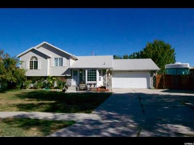 West Jordan Single Family Home For Sale: 3213 Green Mesa Way