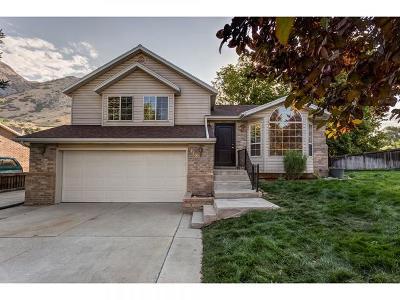 Springville Single Family Home For Sale: 418 N 600 E