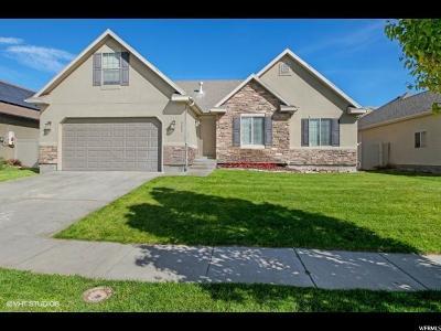 Eagle Mountain Single Family Home For Sale: 4084 N Lake Mountain Dr