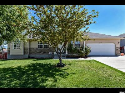 West Jordan Single Family Home For Sale: 6651 S Liza Ln W