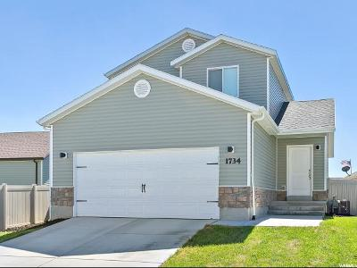 Eagle Mountain Single Family Home For Sale: 1734 E Downwater