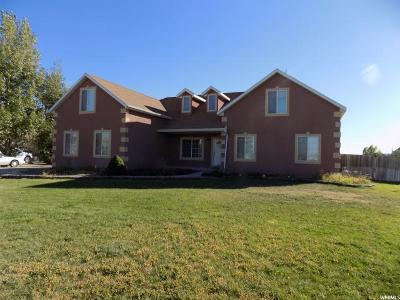 Eagle Mountain Single Family Home For Sale: 954 E Russell Rd
