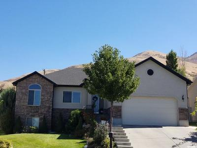 Perry Single Family Home For Sale: 1419 S 25 E