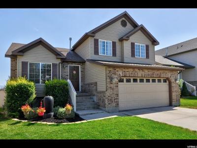West Jordan Single Family Home For Sale: 8519 S 6430 W