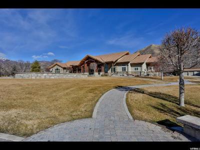 Mapleton Single Family Home For Sale: 750 S Peterson Ln E