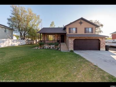 Brigham City Single Family Home For Sale: 986 E 200 S