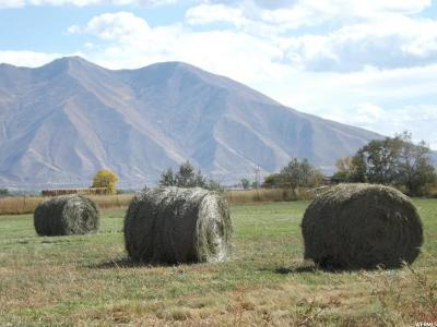 Spanish Fork Farm For Sale: 1967 W 4000 S
