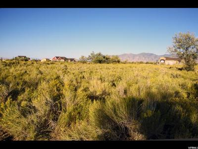 Tooele County Residential Lots & Land For Sale: 365 N Race St